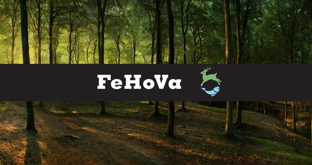 FeHoVa 2018